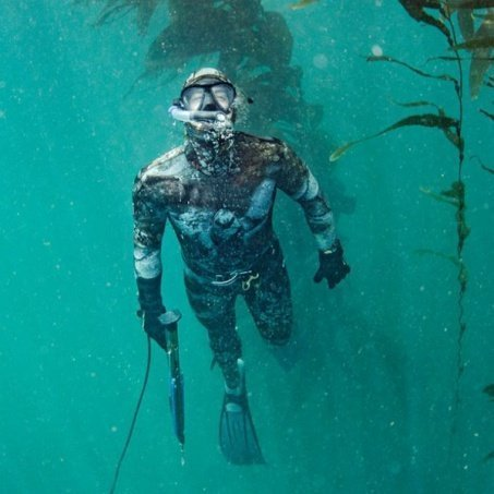 Hunting diving